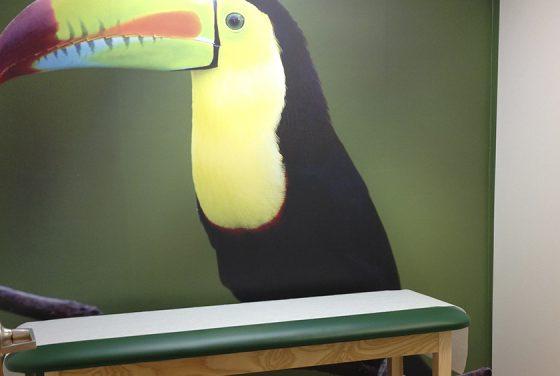 EPO Examining room